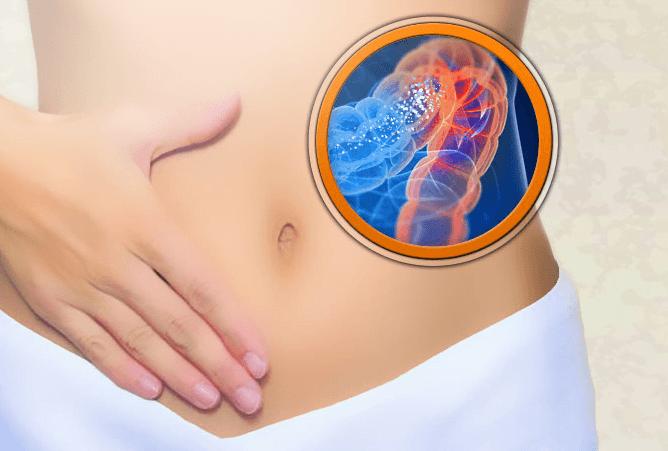 Hassas Barsak Sendromu-İrritabl Barsak Sendromu (IBS)